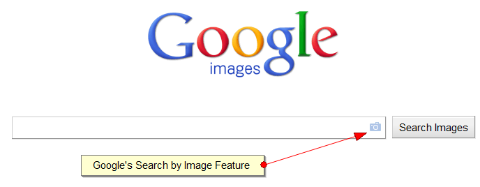 Google Search by Images