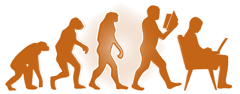 The Theory of PR Evolution