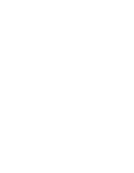 Magento Develpoment